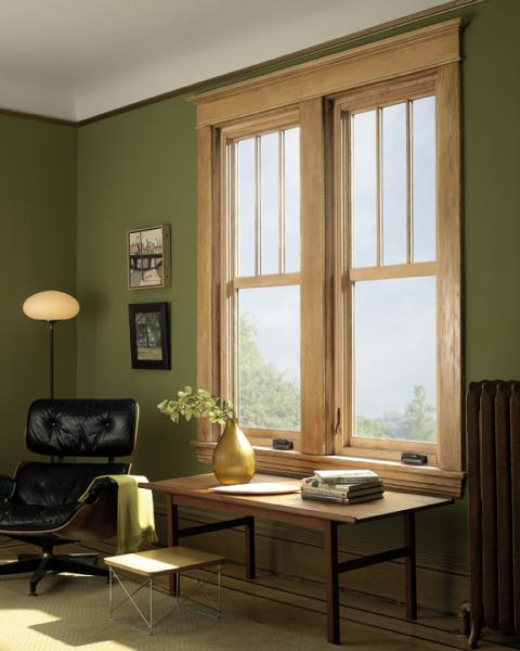 Marvin Windows and Doors Ultimate Push Out Replacement Casement Window